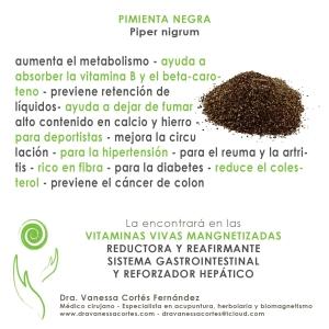 cartel_pimineta negra